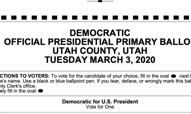 Pondering My Democratic Primary Ballot (!)