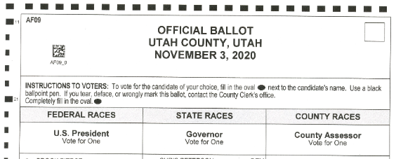 My November 2020 Election Ballot